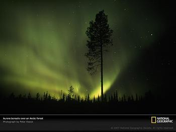 aurora borealis-aurora-borealis-arctic-circle-701275-sw.jpg