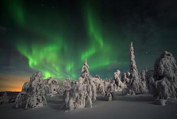 aurora borealis-aurora-borealis-lapland.jpg