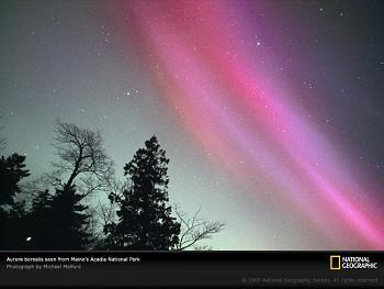 aurora borealis-pink-aurora-borealis-maine.jpg