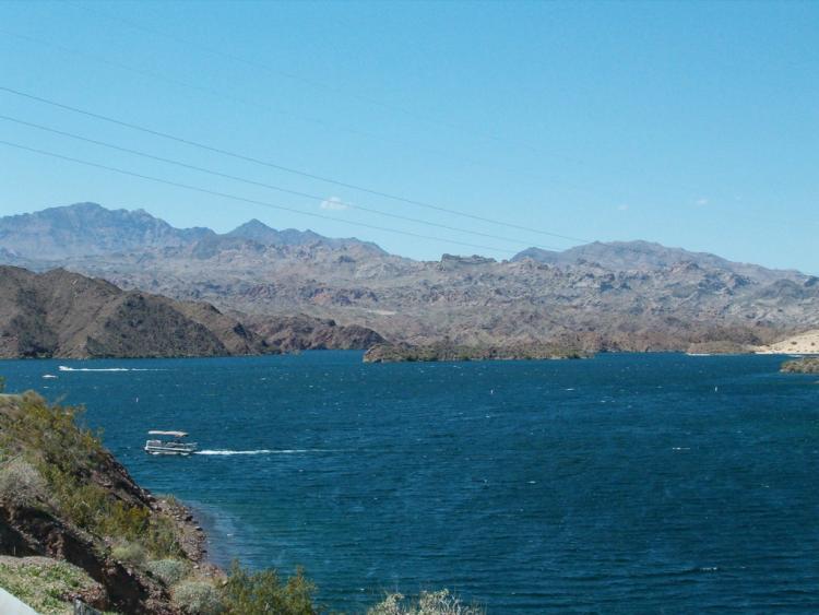 Lake mohave kingman arizona for Lake mohave fishing