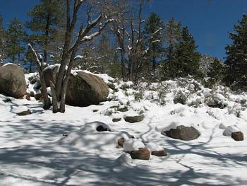 Arizona photos! post them here!-hualapai-snow-072.jpg
