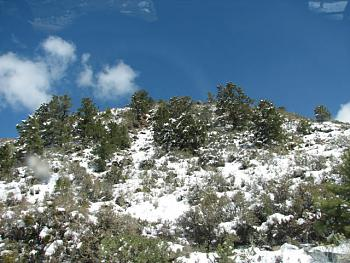 Arizona photos! post them here!-hualapai-snow-161.jpg