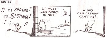 comic strips this winter-mutts-3-4-14.jpg