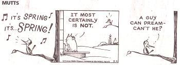 comic strips this winter-mutts-3-4-14.jpg