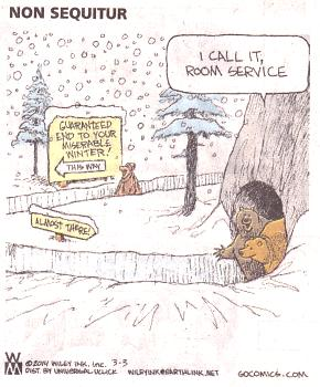comic strips this winter-non-sequitor-3-3-14.jpg