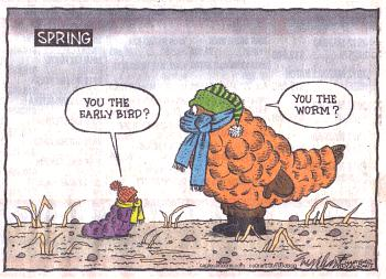comic strips this winter-hartford-courant.jpg