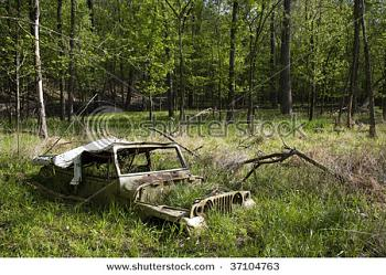 Older Jeeps-old-jeep-abandoned-woods-37104763.jpg
