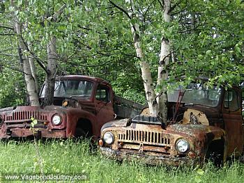 Old Trucks-1447-old-farm-trucks.jpg