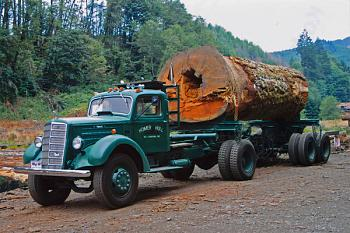 Old Trucks-1941mack-1-.jpg