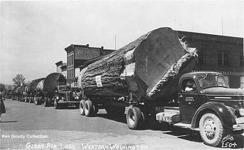 Old Trucks-logging_truck_parade-vi.jpg