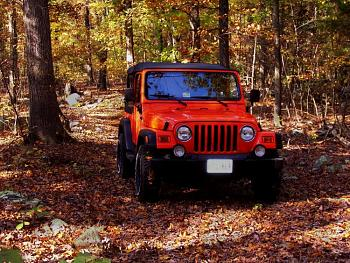 Post Your Jeep-100_2990.jpg