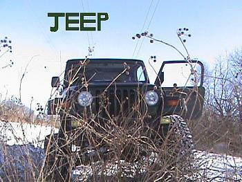 Post Your Jeep-jeepim.jpg