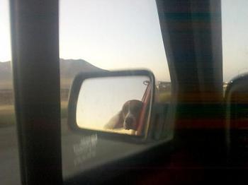 Mirror Pictures-forumrunner_20120320_180727.jpg