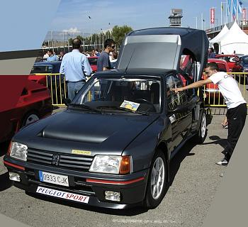 15 Awesome Supercars the Feds Won?t Seize-1984-1985-peugeot-205-turbo-16.jpg