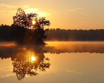 Sunriver-alljungun-lake-morning-tree-sun-river-lake.jpg