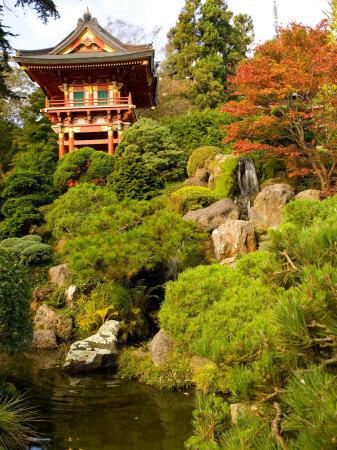San Francisco California Japanese Tea Garden Photo Picture Image
