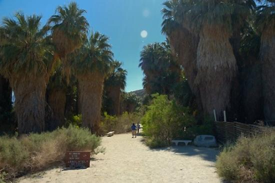 thousand palms lesbian singles See the homes for sale in thousand palms and get a head start viewing open houses browse our other homes for sale in california at re/max.
