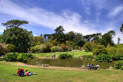 San Francisco, California: San Francisco Botanical Garden Photo, Picture,  Image