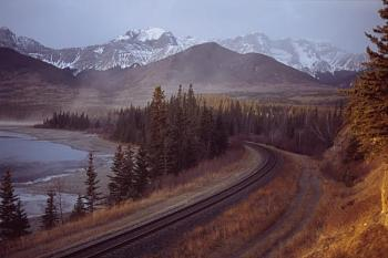 The Canadian Picture Thread!-athabasca_rail_at_brule_lake.jpg