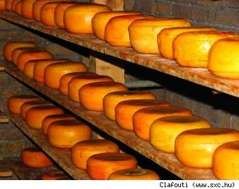 How many Canadians do we have here?-cheeseclafoutidiy.jpg