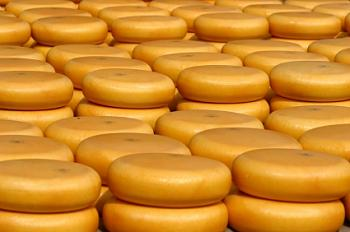 How many Canadians do we have here?-cheese-wheels2.jpg