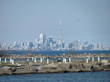 Toronto-img_0780.jpg