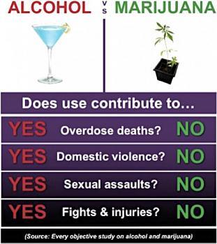 Canada has gone to pot?-alcohol_vs_marijuana.jpg