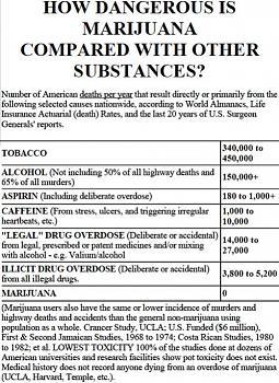 Canada has gone to pot?-how_dangerous_is_marijuana.jpg