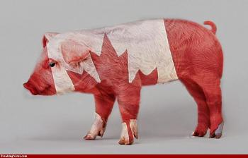 Canada has gone to pot?-canadian-bacon-5.jpg