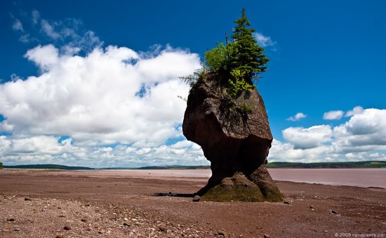 Saint john canada bay of fundy photo picture image for Minimalist house bay of fundy