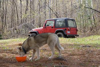Lets see everyones Canadian jeeps-love-shack.jpg