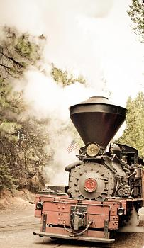 Steam trains in coastal range?-dsc02117.jpg