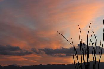February Picture of the Month-sunset-108-copy.jpg