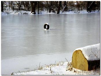 Picture of the Month Contest - March-automobile-tire-standing-ice-james-river-canal-richmond-virginia.jpg