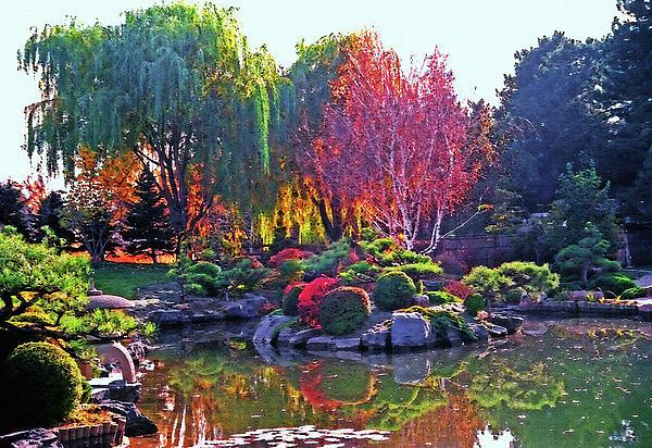 Denver Colorado Denver Botanic Gardens Photo Picture Image