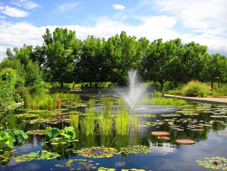 Denver Botanic Gardens Denver_colorado_botanic_garden