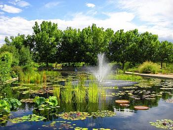Denver Botanic Gardens-denver_colorado_botanic_garden.jpg