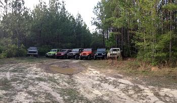 Gulf Coast Jeep Club-image.jpg