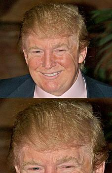 ?double comb-over?-trumphair.jpg