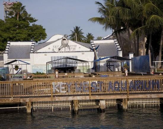 Key West Florida Key West Aquarium Photo Picture Image