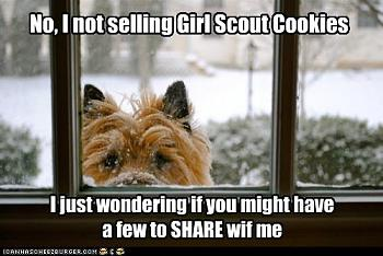 Stamp out Girl Scout Cookies!-65.jpg