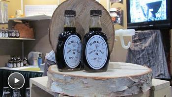Most Store Honey Isn't Honey I-birch-syrup.jpg