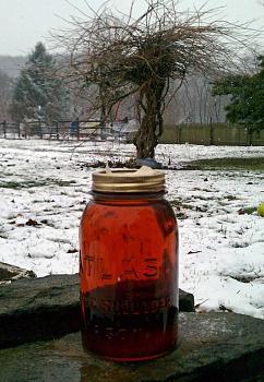 Most Store Honey Isn't Honey I-maple-syruping-festival.jpg