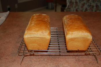 "How about ""Salt Rising Bread""....do you know what it is?? Have you heard of it??-salt-rising-bread.jpg"