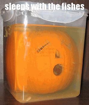 Free Pumpkin Carving Patterns-sleeps-fishes-pumpkin.jpg