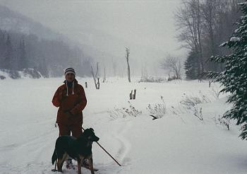 What dominates your Landscape?-winter-camp.jpg