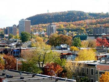 What's your City Famous For?-montreal-mont-royal-02.jpg