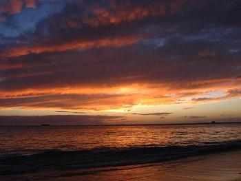 Coming to Hawaii for Senior Trip-img_5519.jpg