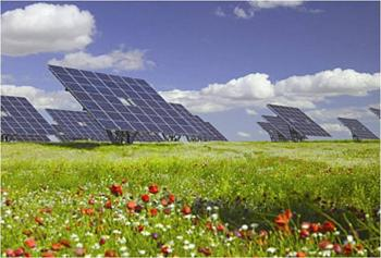 Two workers die at Fukushima plant-solar-farm.jpg