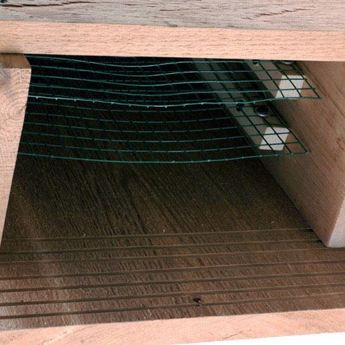 Pest treatments page 2 home improvement city profile for Bat condo